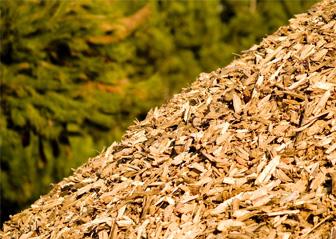 Biomassa klaar om verwerkt te worden